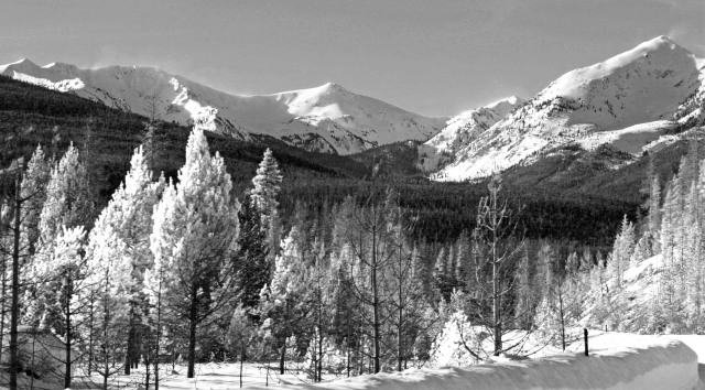 At the west base of Rocky Mountain National Park, CO - Feb, 2011
