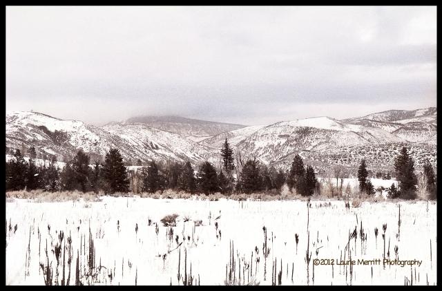 Colorado04_1500