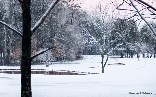_MG_1306_snow