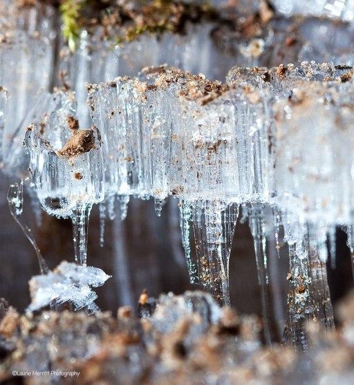 ice2-3472_900