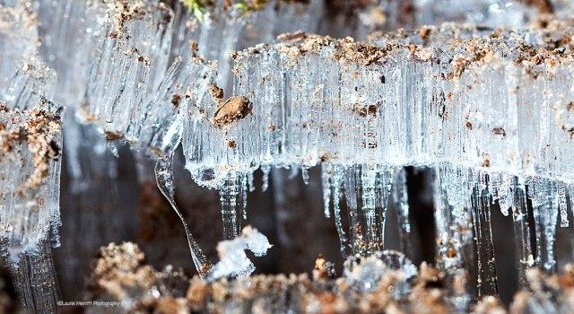 ice2-3477_900