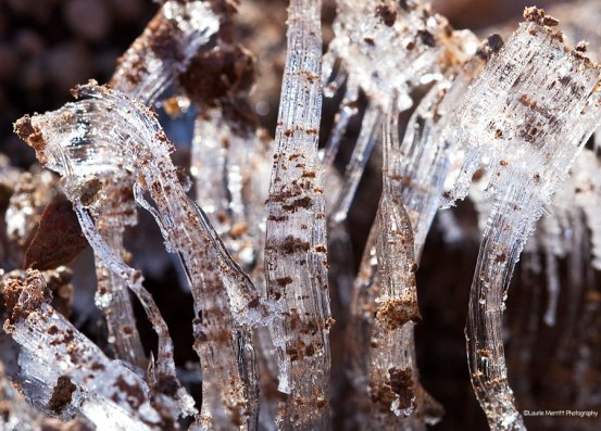 ice2-3484_900