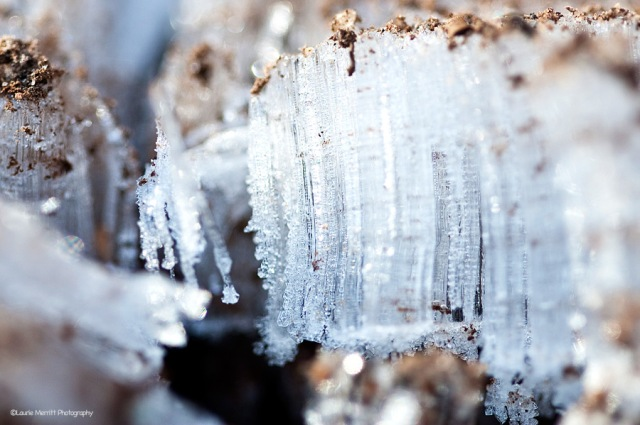 ice2-3493_900