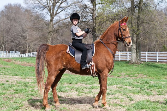RidingLessons1-6063_900