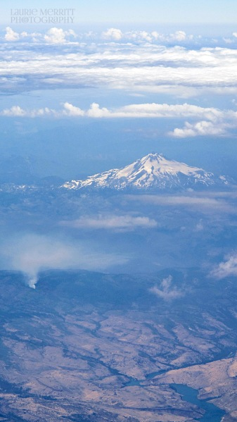 California's Mt. Shasta serves as a backdrop to a forest fire.