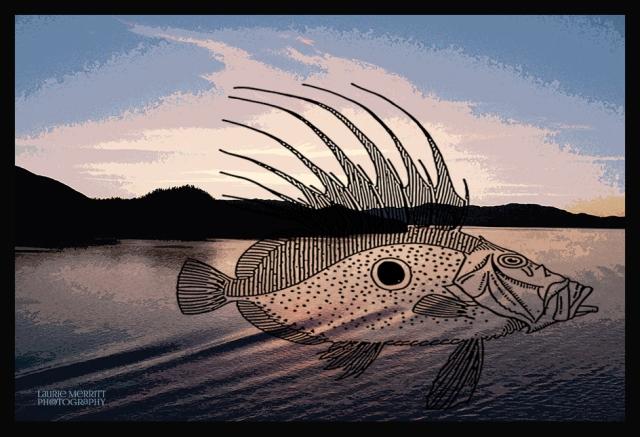 Ketch-9148_canvasfish